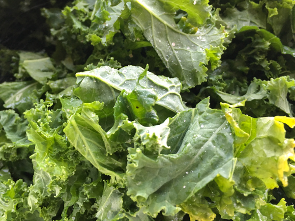 how to make kale greens
